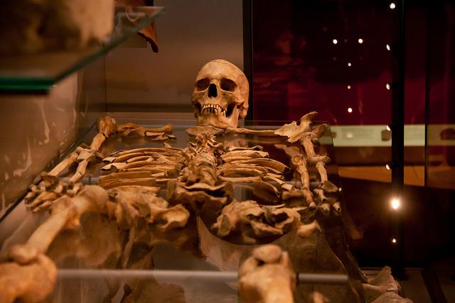 roman skeleton - photo by Chris Goldberg / Flickr